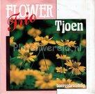 Flower Trio - Tjoen